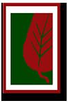 LLP_Moulding_Logo_100